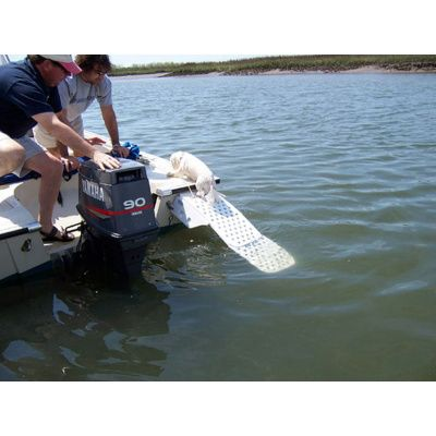 Afbeelding 4 van Azalp Skamper-Ramp trap speciaal voor honden