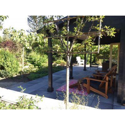 Bild 36 von Azalp Blockhaus Ben 650x750 cm, 45 mm