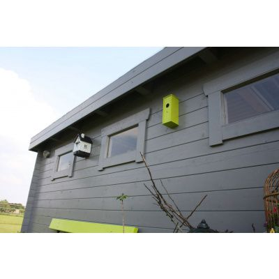 Bild 25 von Azalp Blockhaus Ingmar 300x300 cm, 30 mm