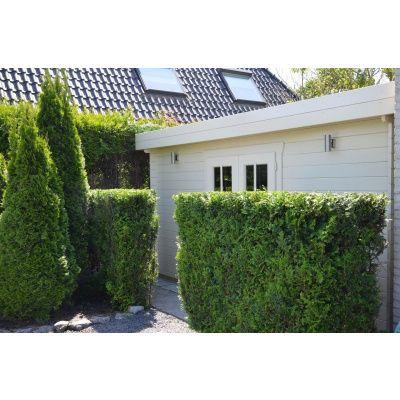 Bild 26 von Azalp Blockhaus Ingmar 350x350 cm, 30 mm