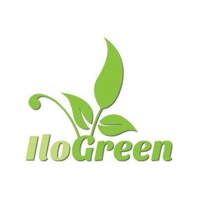 Afbeelding 9 van Ilogreen Saunadeur Trend (Elzen) 209x79 cm, groenglas