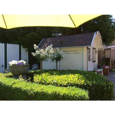 Bild 55 von Azalp Blockhaus Kent 400x350 cm, 45 mm