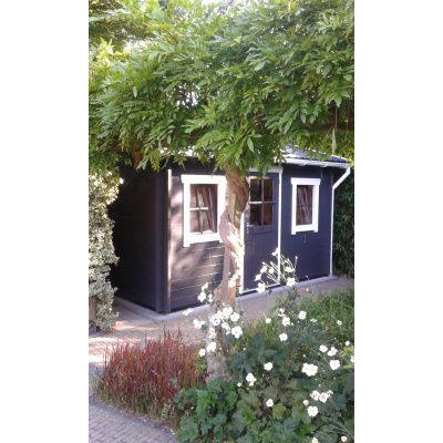 Bild 10 von Azalp Blockhaus Mona 550x350 cm, 45 mm