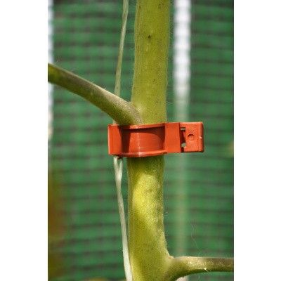 Afbeelding 2 van Royal Well Tomatenclips