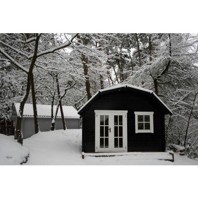 Bild 7 von Azalp Blockhaus Cornwall 400x350 cm, 30 mm