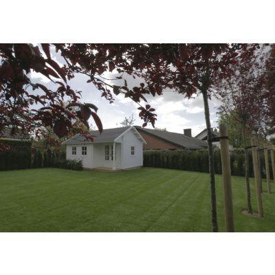 Afbeelding 42 van Azalp CLASSIC blokhut Cottage Style Cumberland 520x430 cm, 45 mm