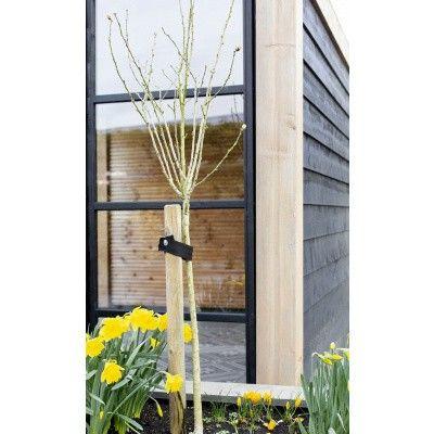 Afbeelding 7 van WoodAcademy Zijwand 400 cm glas met roede*