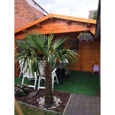 Bild 7 von Azalp Blockhaus Tim 450x350 cm, 45 mm