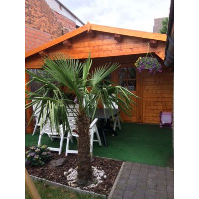 Bild 7 von Azalp Blockhaus Tim 450x450 cm, 30 mm