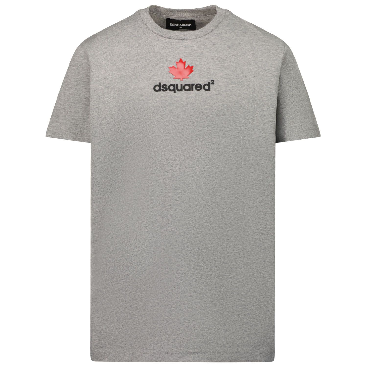Picture of Dsquared2 DQ0515 kids t-shirt grey