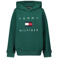 Picture of Tommy Hilfiger KB0KB06142 kids sweater green