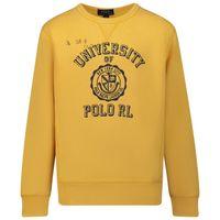Picture of Ralph Lauren 799369 kids sweater ocher
