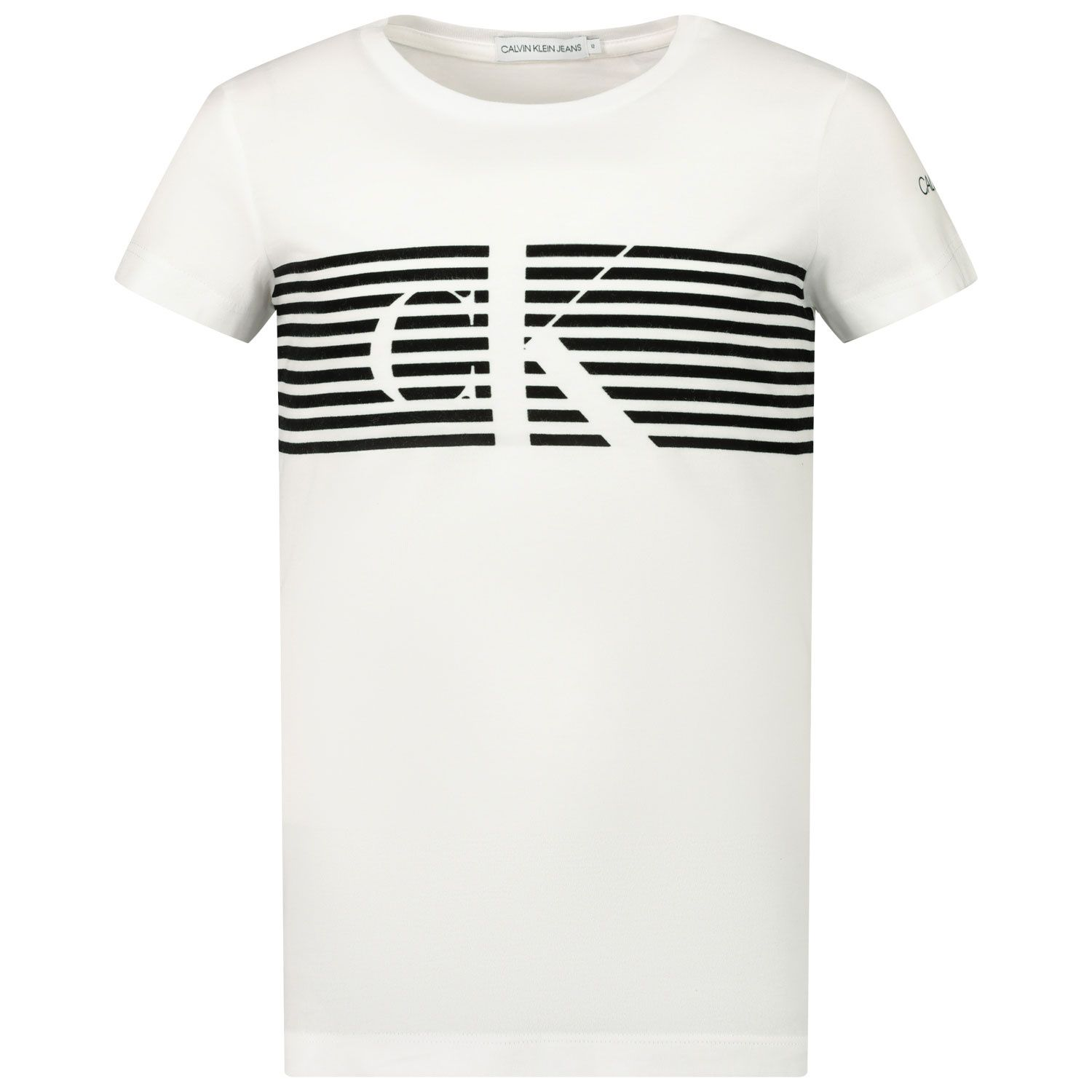 Picture of Calvin Klein IG0IG00569 kids t-shirt white