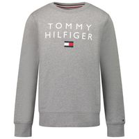 Picture of Tommy Hilfiger KB0KB06744 kids sweater grey