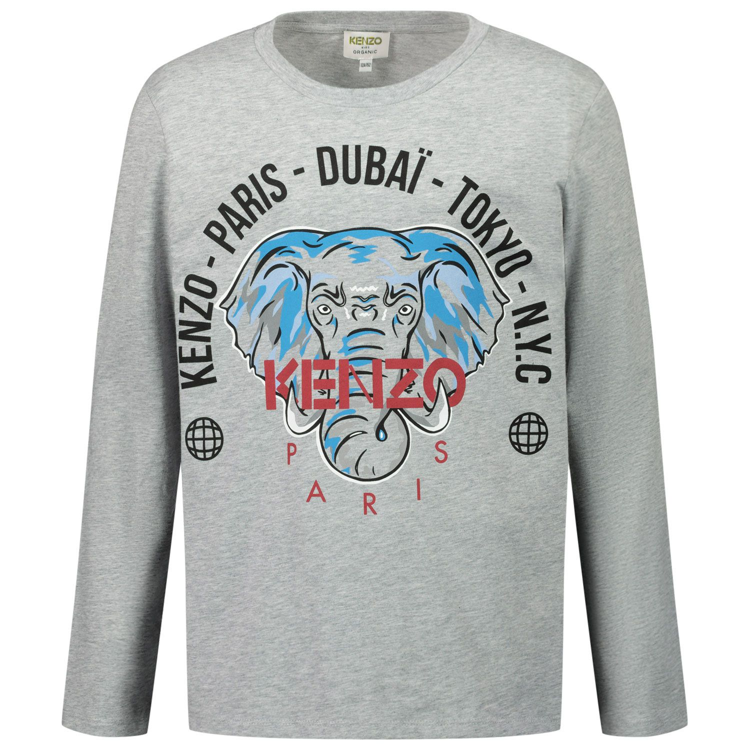 Picture of Kenzo KR10608 kids t-shirt grey