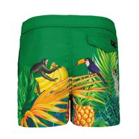 Picture of My Brand 3X21009C0002 kids swimwear green