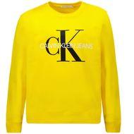 Afbeelding van Calvin Klein IU0IU00069 kindertrui geel