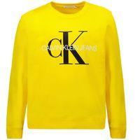 Picture of Calvin Klein IU0IU00069 kids sweater yellow