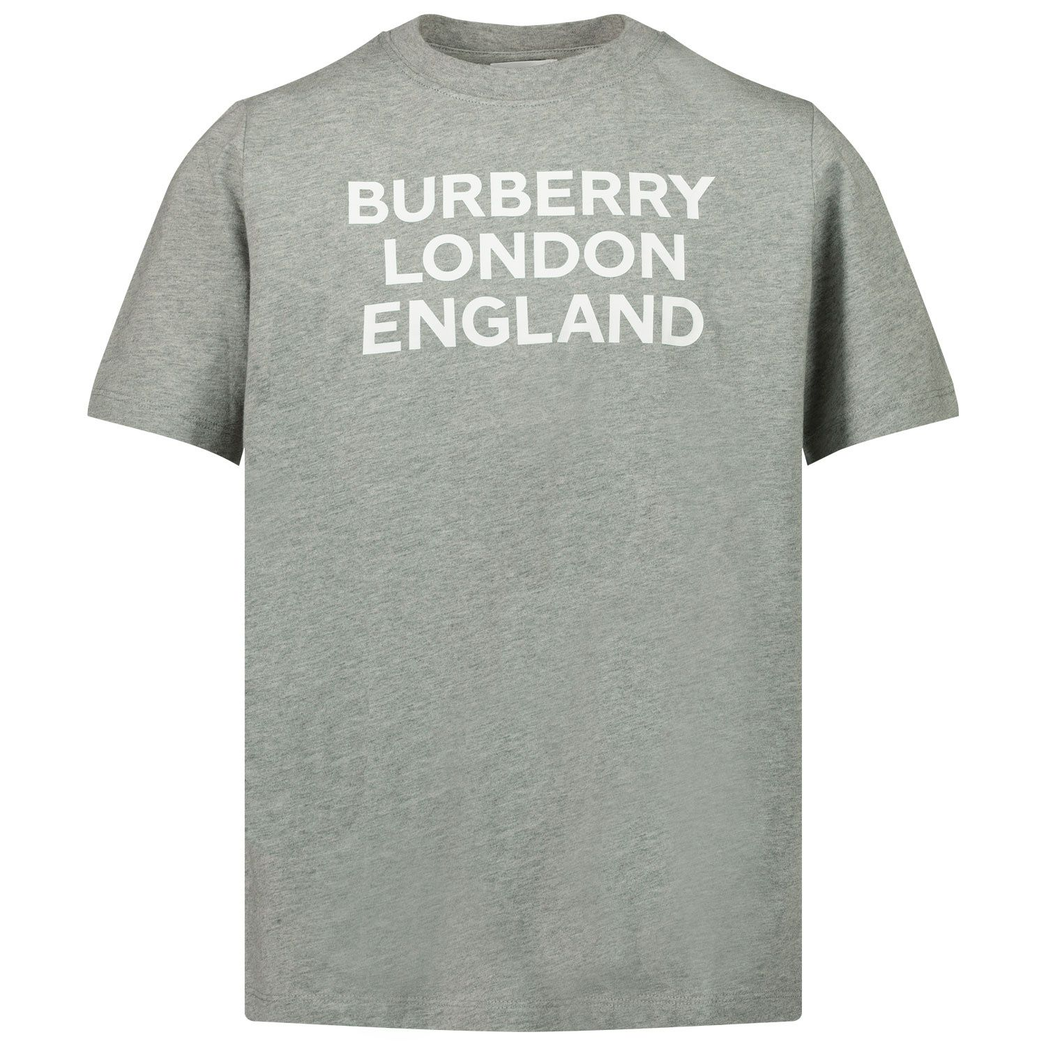 Picture of Burberry 8028807 kids t-shirt grey