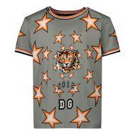 Afbeelding van Dolce & Gabbana L1JT8A/G7WJX kinder t-shirt licht grijs