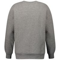 Picture of Replay SB2026 02022739 kids sweater grey