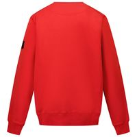 Picture of Stone Island 61340 kids sweater red