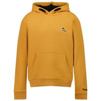 Picture of Timberland T25S76 kids sweater camel