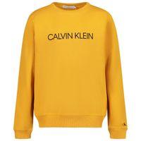 Picture of Calvin Klein IU0IU00162 kids sweater ocher