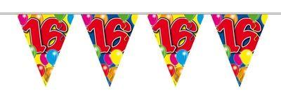 Vlaggenlijn balloons 16 jaar 10M