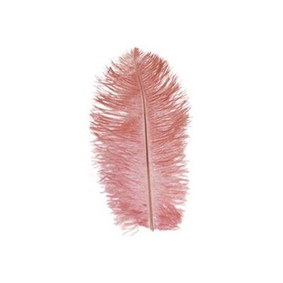 Foto van Struisveer 28-32 cm roze