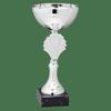 Afbeelding van Zilveren trofee 19,00 cm