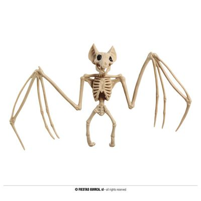 Foto van Skelet Vleermuis