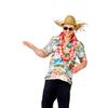 Afbeelding van Hawaii blouse