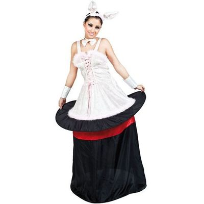 Foto van Konijn uit hoed kostuum