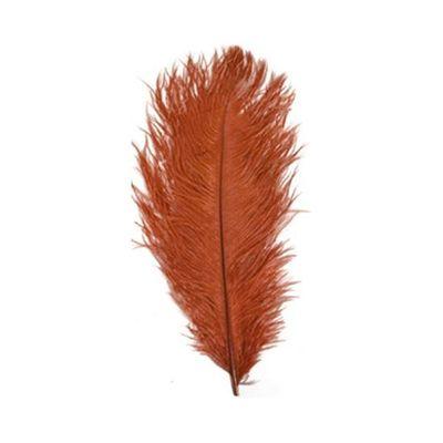 Struisveer 28-32 cm rood