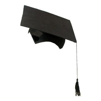Professorhoed vilt zwart (2-delig)
