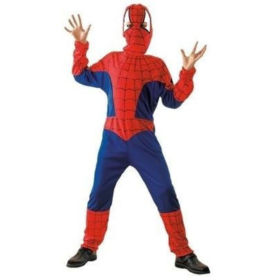 Foto van Spiderman pak kind