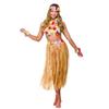 Afbeelding van Hawaii kostuum vrouw
