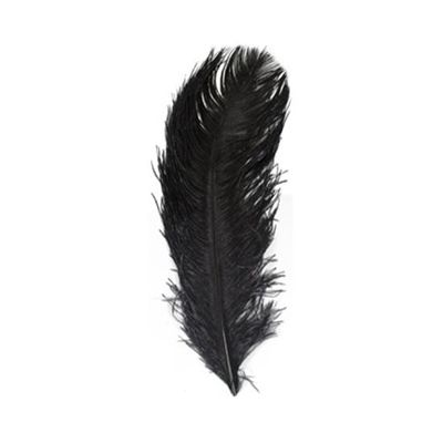 Struisveer 34-38 cm zwart