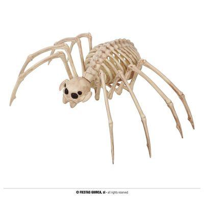 Foto van Skelet Tarantula Spin
