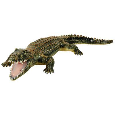 Foto van Krokodil (60cm)