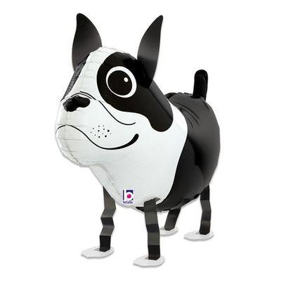 Folieballon hond