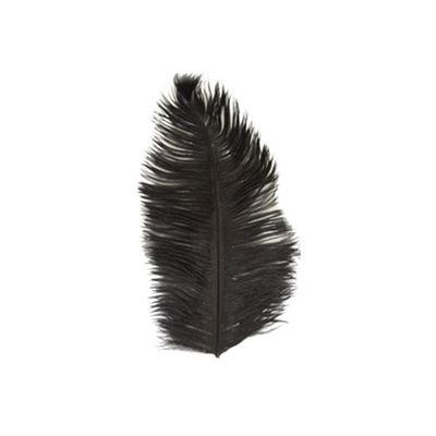Struisveer 28-32 cm zwart