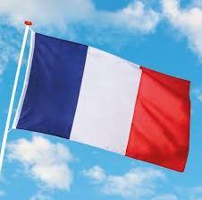 Foto van Gevelvlag Frankrijk 90x150cm