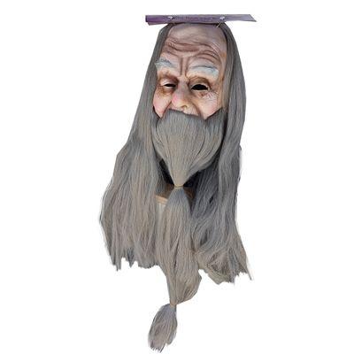Foto van Perkamentus / Gandalf masker