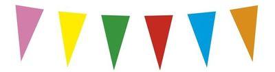 St. Papieren vlaggenlijn veelkleurig (10 m)