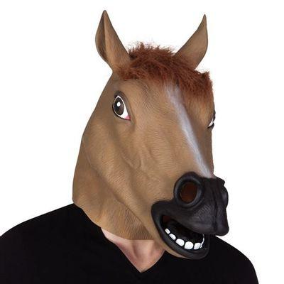 Foto van Paarden masker