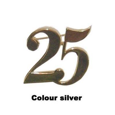 Foto van Steekpin 25 zilver