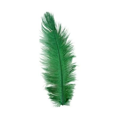 Struisveer 34-38 cm groen