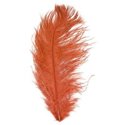 Struisveer 40-45 cm rood